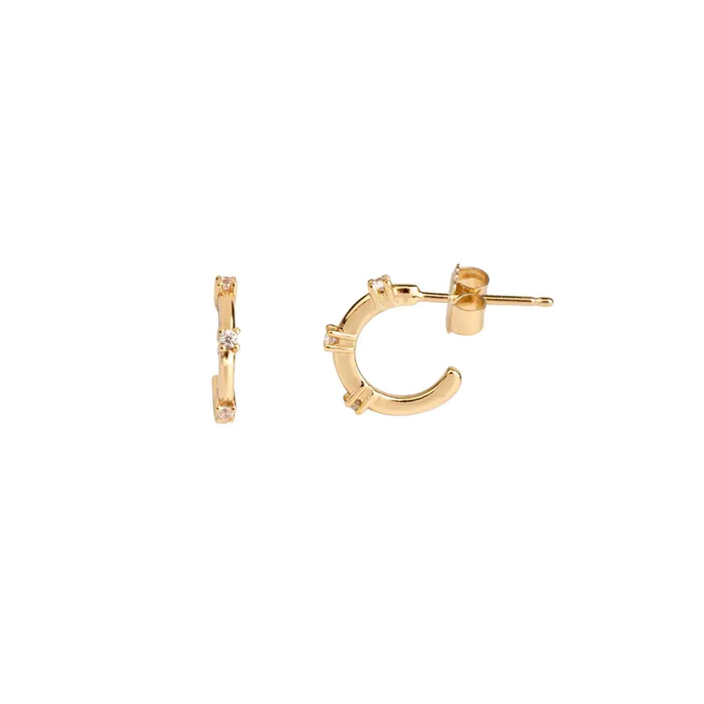 Guld örhängen